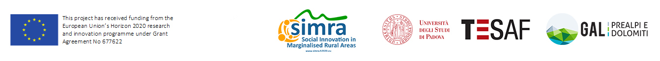 Social Innovation in Marginalised Rural Areas