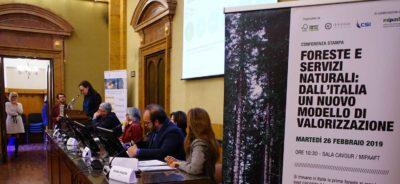 prime foreste certificate al mondo