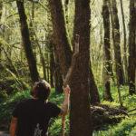foresta ilaria doimo