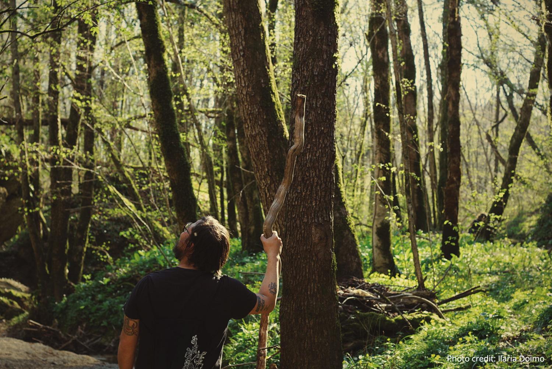 Foreste Salute E Benessere Dottorato Di Ricerca Etifor